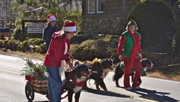 And Burnese Mountain dogs pulled carts laden with greens