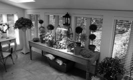 The new Orangerie