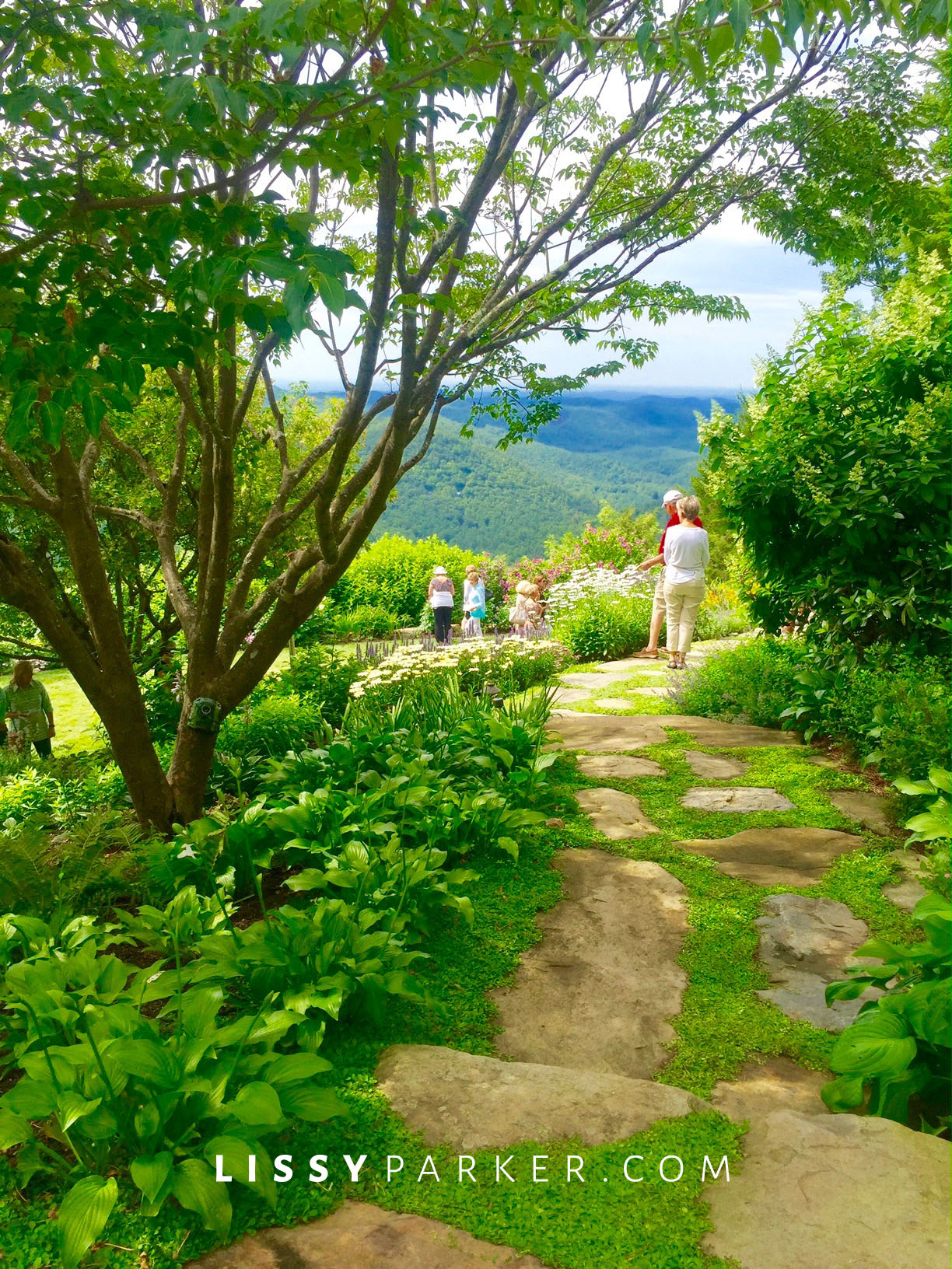 stone path and mountain view Highlands