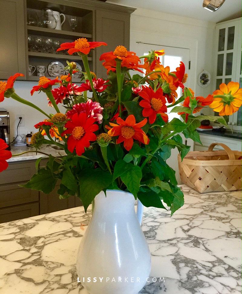orange sunflowers