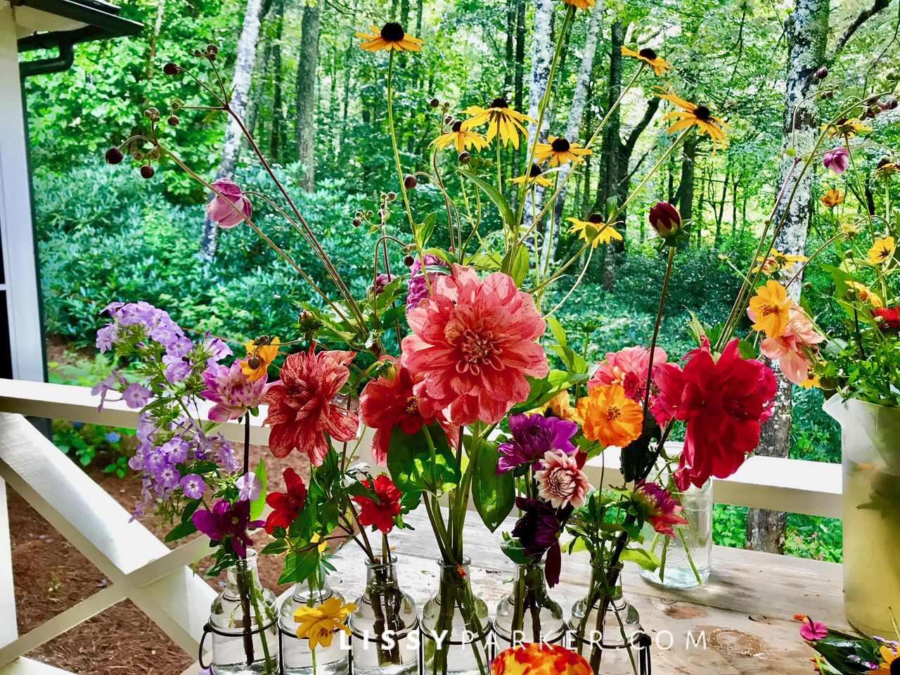Friday flowers-Dahlias