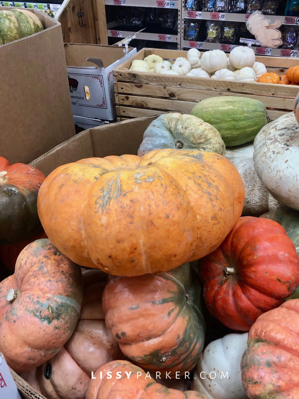 Trader Joe's pumpkins
